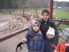 vanocni-zoo-na-kopecku-003
