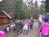 vanocni-zoo-na-kopecku-004