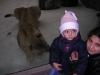 vanocni-zoo-na-kopecku-006